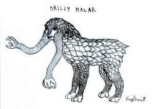 Orilly Malar